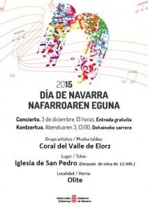 Concierto día de Navarra Cartel