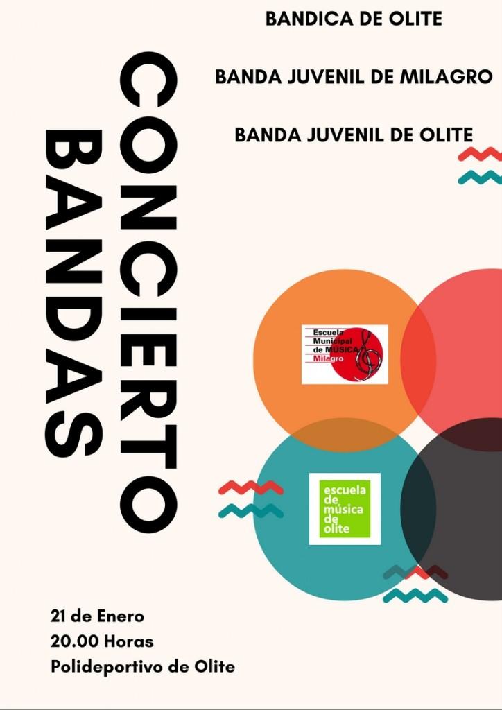 CONCIERTO BANDAS 21enero