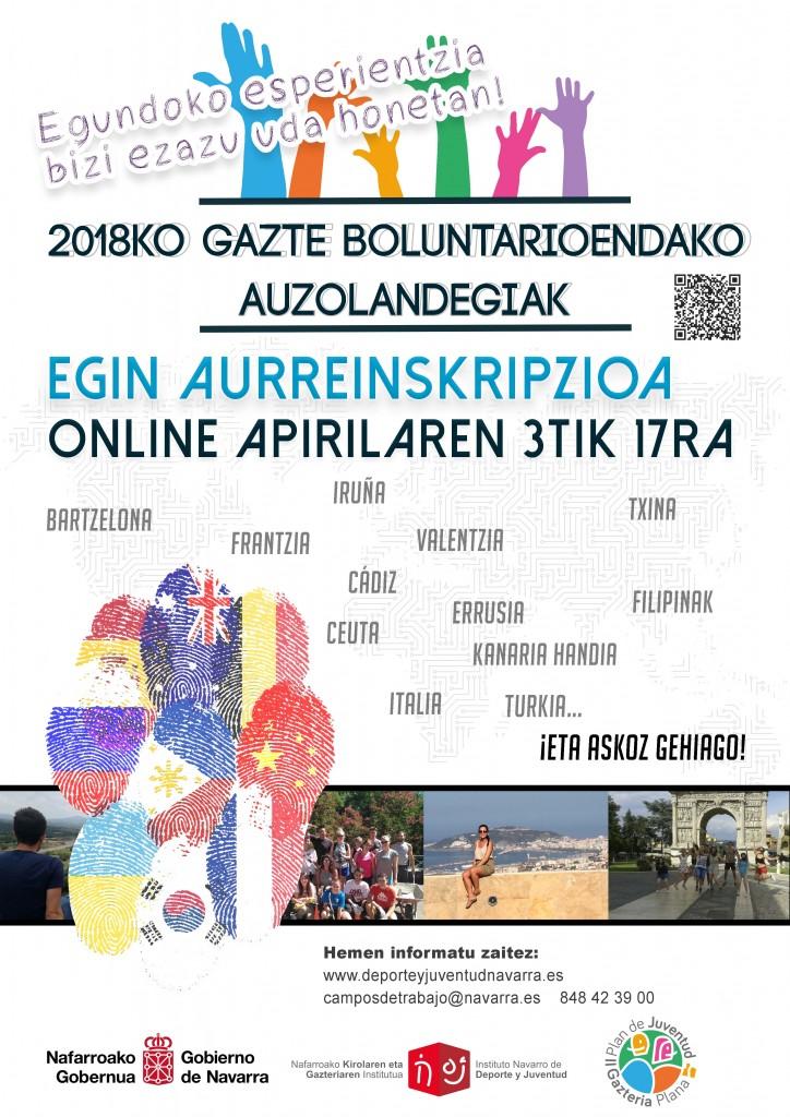 cartel campos de voluntariado 2018 EUSKERA