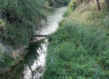 La CHE comienza los trabajos de restauración del Río Zidacos
