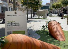 Crece en ecológico: Exposición CPAEN/NNPEK
